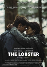 the lobster streamcloud
